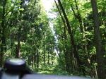創生の森 ふき.JPG